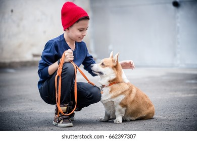 A handsome boy and his four legged welsh corgi pembroke friend looking at each other