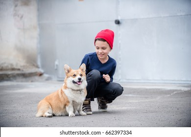 A handsome boy patting a welsh corgi pembroke puppy