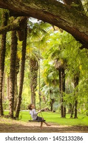 A handsome boy rides a long swing surrounded by palm trees and trees. Picturesque paradise of nature
