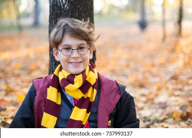 handsome boy sits in the beautiful autumn park with gold leaves , wears in suit and stripped scarf on the bokeh background. Harry Potter style, Halloween costume
