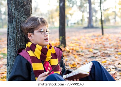 handsome boy sits in the beautiful autumn park with gold leaves , holds wand in his hand , wears in suit and stripped scarf on the bokeh background. Harry Potter style, Halloween costume