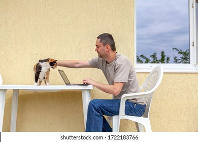 handsome business man working from his house porch during the coronavirus outbreak. Covid-19 adjusting to new lifestyle. Man petting cat