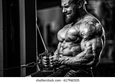Handsome caucasian athlete muscular fitness male model execute exercise in the gym. Brutal bodybuilder powerful training on diet back and biceps