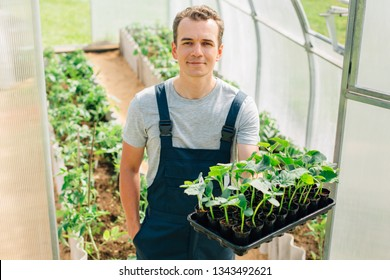 Handsome cheerful young gardener in overall standing with seedlings in greenhouse. Portrait of joyful farmer.