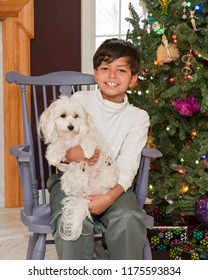 A handsome elementary boy happily holding his puppy near the family Christmas tree.