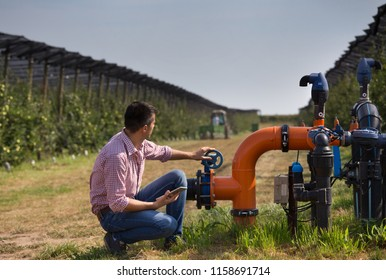 Handsome engineer with tablet squatting beside pipe system for irrigation in modern apple orchard with trees and tractor in background during harvest