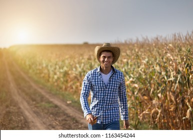 Handsome farmer with straw hat walking in corn field in summer time
