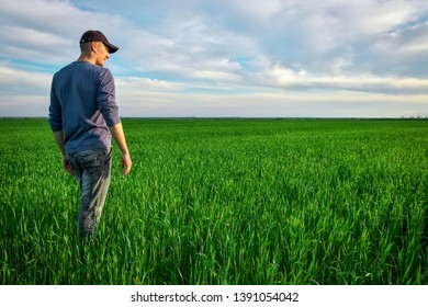 Handsome farmer. Young man walking in green field. Spring agriculture