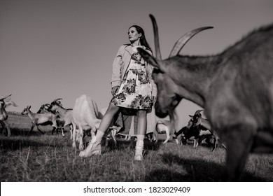 Handsome female shepherdess stands in a pasture among a herd of goats. Black and white image.