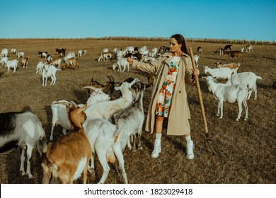 Handsome female shepherdess stands in a pasture among a herd of goats and feeds they.