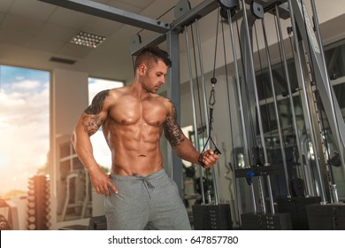 Handsome fit man exercise triceps with cable in gym.