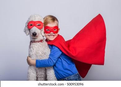 Handsome little superman with dog. Superhero. Royal Poodle. Studio portrait over white background