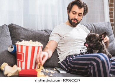 handsome loner palming bulldog and taking french fries on sofa in living room