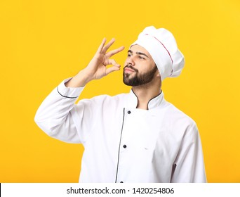 Handsome male chef on color background