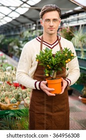 Handsome male gardener in uniform and glasses standing in greenhouse and holding small tagerine tree in pot