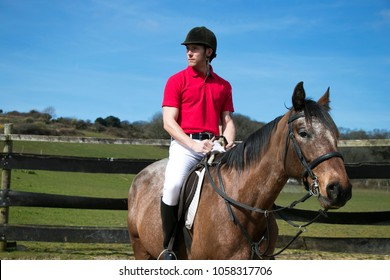 Handsome Male Horserider on horseback with helmet, white trousers, black boots and red polo shirt against blue sky.