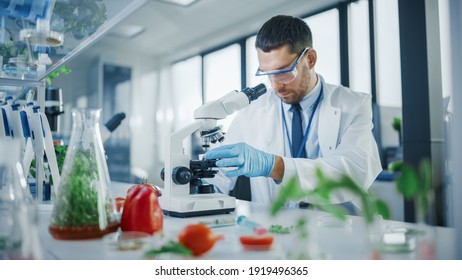 Handsome Male Scientist in Safety Glasses Analyzing a Lab-Grown Food Sample Through an Advanced Microscope. Microbiologist Working on Molecule Samples in Modern Laboratory with Technological Equipment