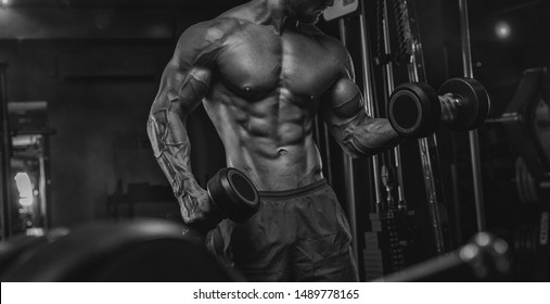 Handsome man with big muscles, posing at the camera in the gym