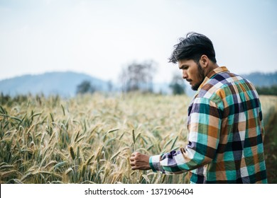 Handsome man farmer with barley field