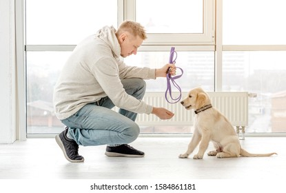 Handsome man holding leash near retriever puppy indoors
