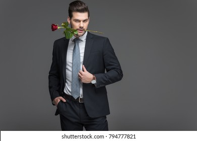handsome man in suit holding red rose in mouth, isolated on grey