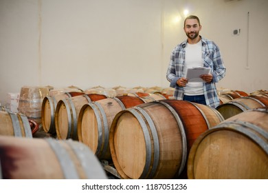 handsome man winemaker in a maturing wine cellar winery during harvest season with oak barrels