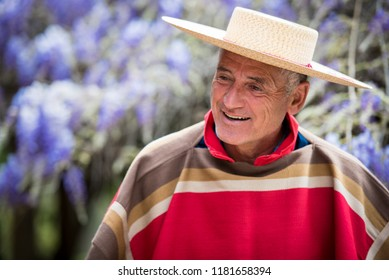 Handsome mature man dressed like a typical chilean huaso