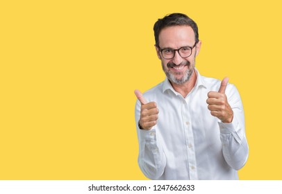 Handsome middle age elegant senior business man wearing glasses over isolated background success sign doing positive gesture with hand, thumbs up smiling and happy. Looking at the camera