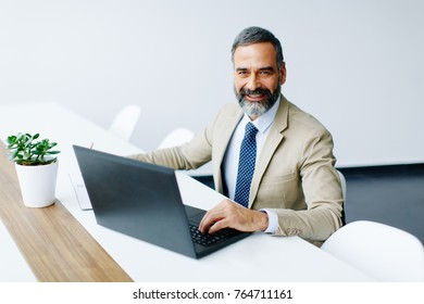 Handsome middle-aged businessman working on laptop in modern office