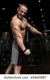 Handsome Muscular Fitness Bodybuilder Doing Heavy Weight Exercise For Triceps On Machine In The Gym