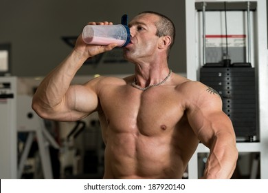 Handsome Muscular Man Drinking Protein Drink
