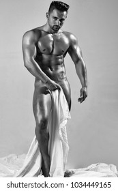 Handsome nude man or muscular bodybuilder, macho, with sexy, muscle torso, body, with six packs and abs, triceps, biceps, with oily skin holds white sheet on grey background