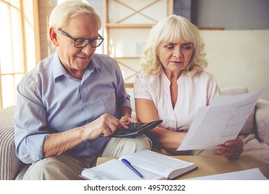 Handsome old man and beautiful woman are examining documents, using calculator and smiling while sitting on couch at home