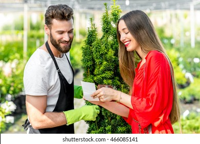 Handsome plant seller with woman buying conifer tree. Customer service in the plant store