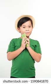 Handsome school age boy holding passport looking at camera wearing straw hat isolated on white background
