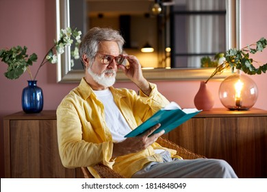 handsome senior male sit on chair reading a book, bearded caucasian man 60 years old have rest at home