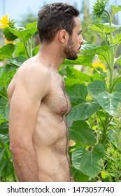 handsome shirtless hairy man standing outdoors in garden