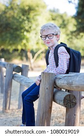 handsome smiling little boy in glasses with backpack ready for school, back to school concept