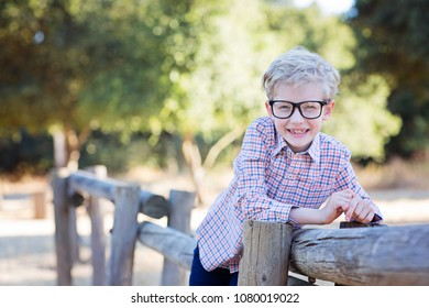 handsome smiling little boy in glasses ready for school, back to school concept