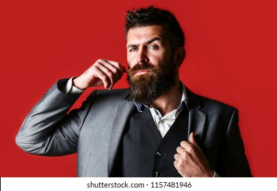 Handsome stylish bearded man. Bearded man in suit and bow-tie. Men's beauty, fashion. Studio portrait of a bearded hipster man. Male beard and mustache. Sexy male, macho, long beard. Copy space.