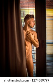 Handsome totally naked muscular young man at home covering nudity with drapes by large windows, in seductive attitude, looking to a side
