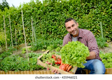 handsome young gardener growing organic bio vegetables