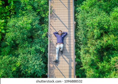 Handsome young indian man relaxing at wooden bridge on top of green tree forest/ top view man lay down