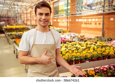 Handsome young man in apron is showing Ok sign, looking at camera and smiling while standing in orangery