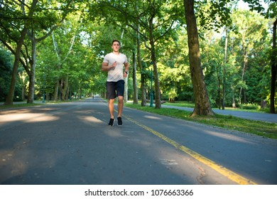 A handsome young man doing sports and jogging in a park.