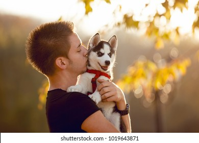 A handsome young man holdings in his arms and kissing his best friend husky puppy dog, friendship concept. isolated on a sunshine blurry three background.
