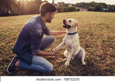 Handsome young man with labrador outdoors. Man on a green grass with dog. Cynologist