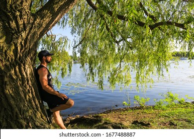 Handsome young man leaning against a weeping willow tree, nearby the Lachine canal, Montreal, Canada