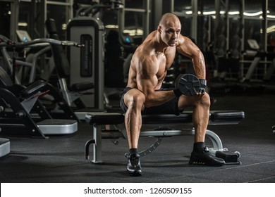 Handsome young muscular Caucasian man of model appearance working out training arms in gym gaining
