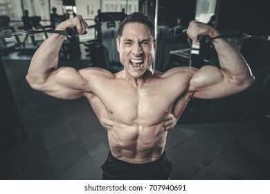Handsome young muscular Caucasian man of model appearance working out training arms in gym gaining weight pumping up muscles bicep and tricep fitness and bodybuilding concept